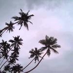 Srí Lanka – 7. den – 4.12.2015 – pláž Unawatuna a západ slunce
