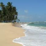 Zajímavosti Srí Lanky