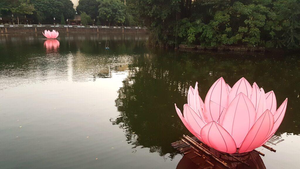 Lotosové jezero